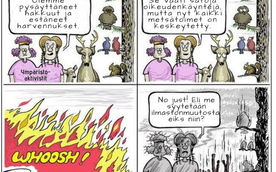 """Trump oli oikeassa """"haravoinnista"""" suomalaisessa metsänhoidossa"""